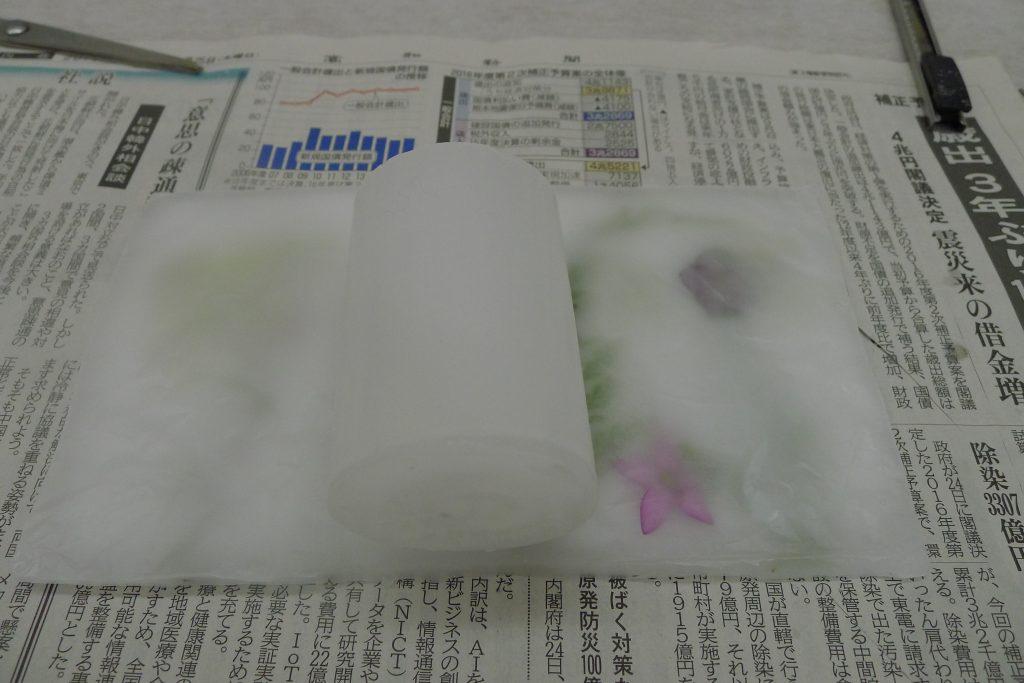 p1110304