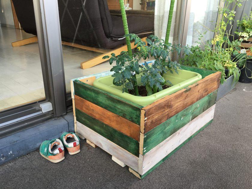 ベランダで初めての家庭菜園!プランターカバーも作りました!〈高橋家〉