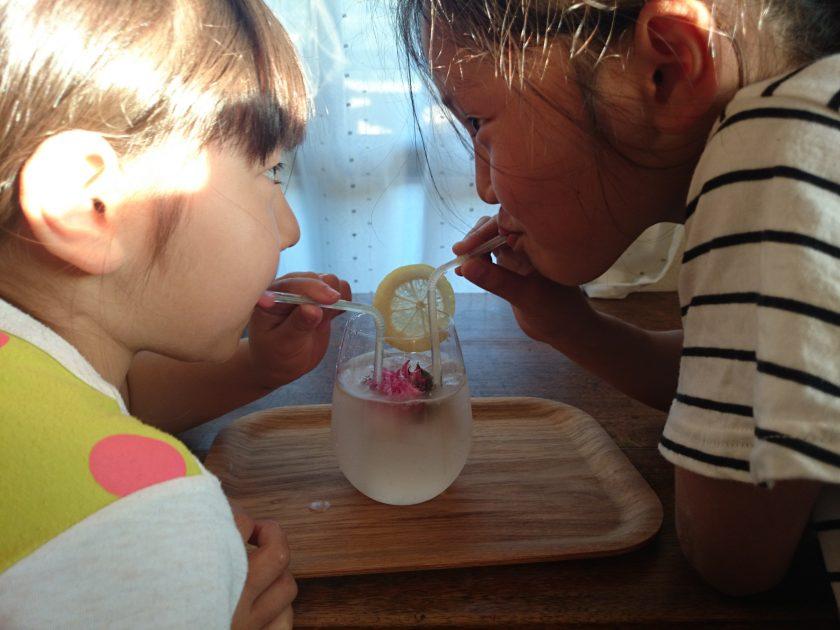 育てて食べよう③収穫したハーブでノンアルコールドリンク(1)モナルディーレモネード<小松家>